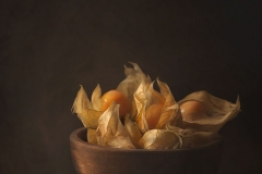 Physalis In The Bowl Still Life